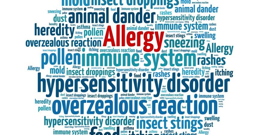 O alergiach prawie wszystko
