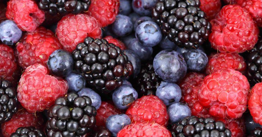 Gdzie na jagody, maliny i truskawki?